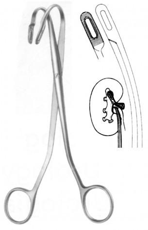 Kidney Forceps